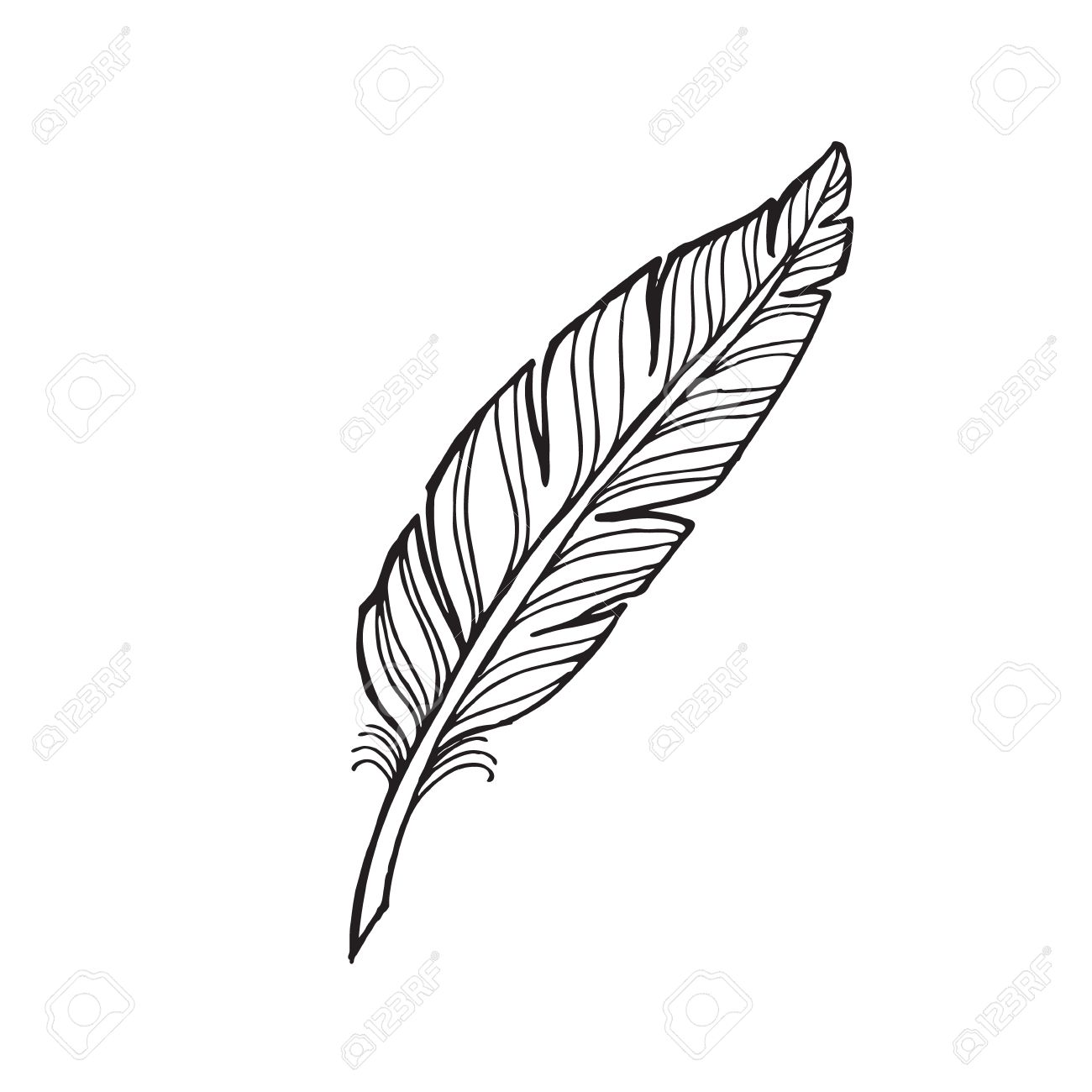 1300x1300 Quill Drawing Free Download