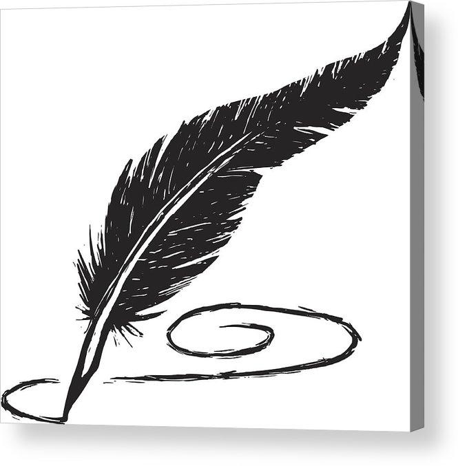665x677 Sketchy Feather Pen Acrylic Print