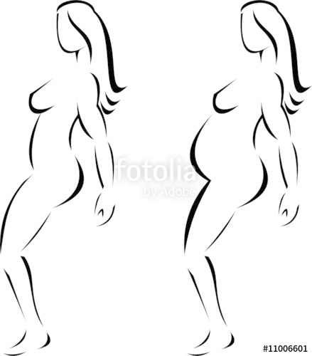 439x500 Female Anatomy Stock Image And Royalty Free Vector