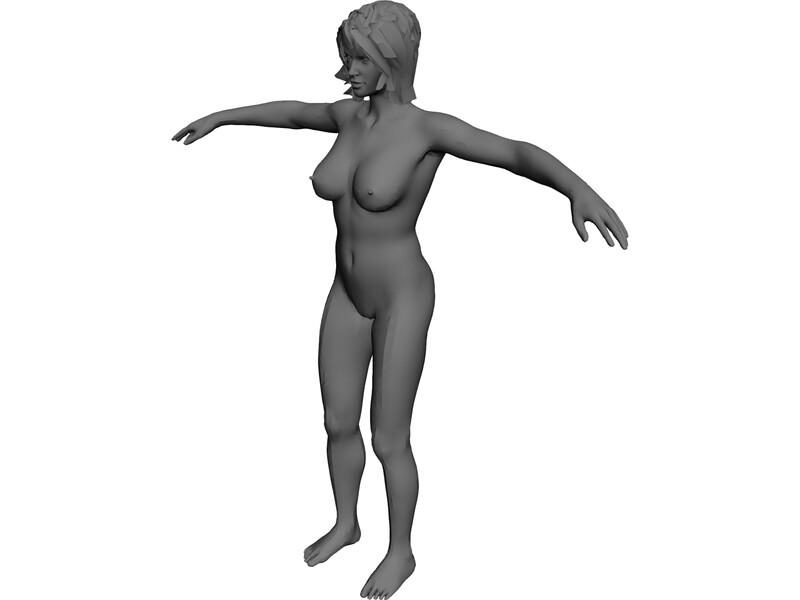 800x600 Female Anatomy Complete Model