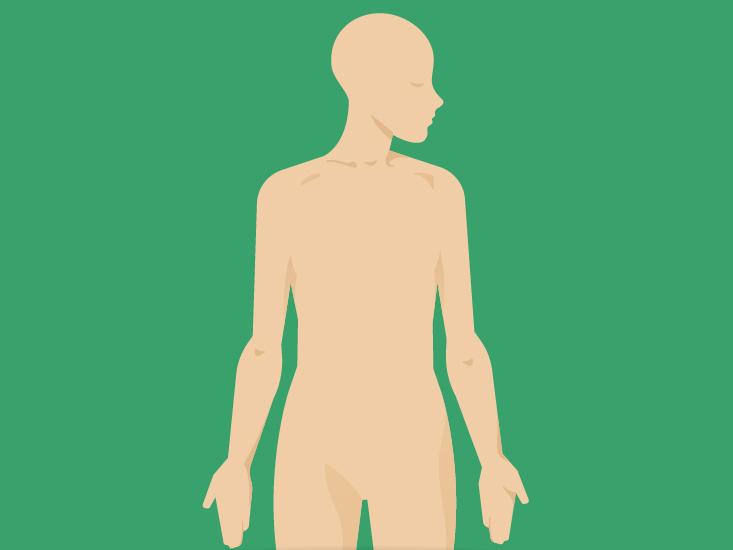 733x550 Chest Anatomy, Definition Diagram Body Maps