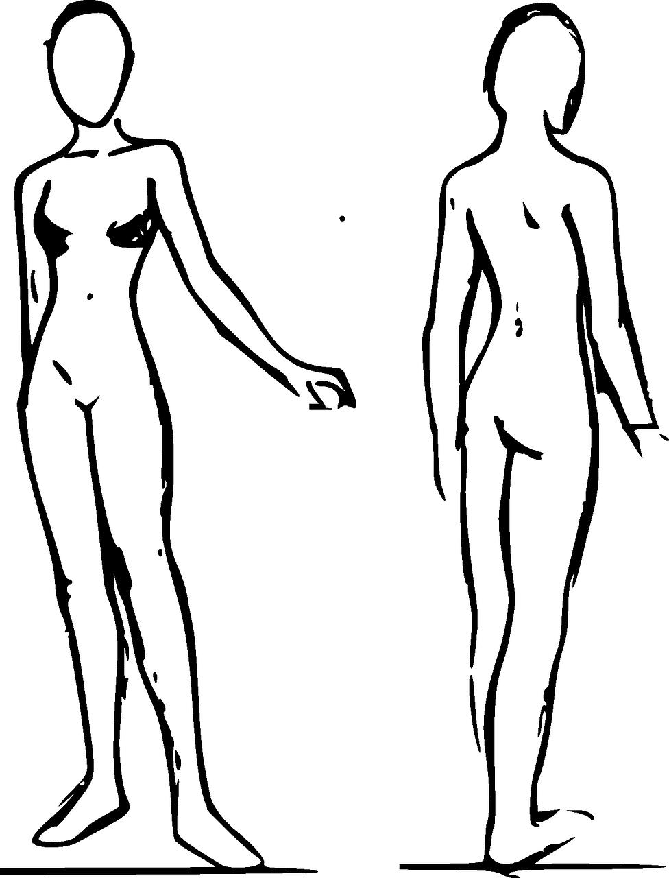 976x1280 Female, Body, Woman, Standing, Anatomy