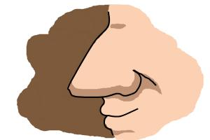 300x200 How To Draw A Female Nose