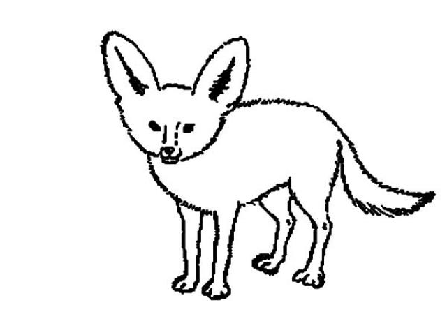 640x480 Fennec Fox Clipart Black And White