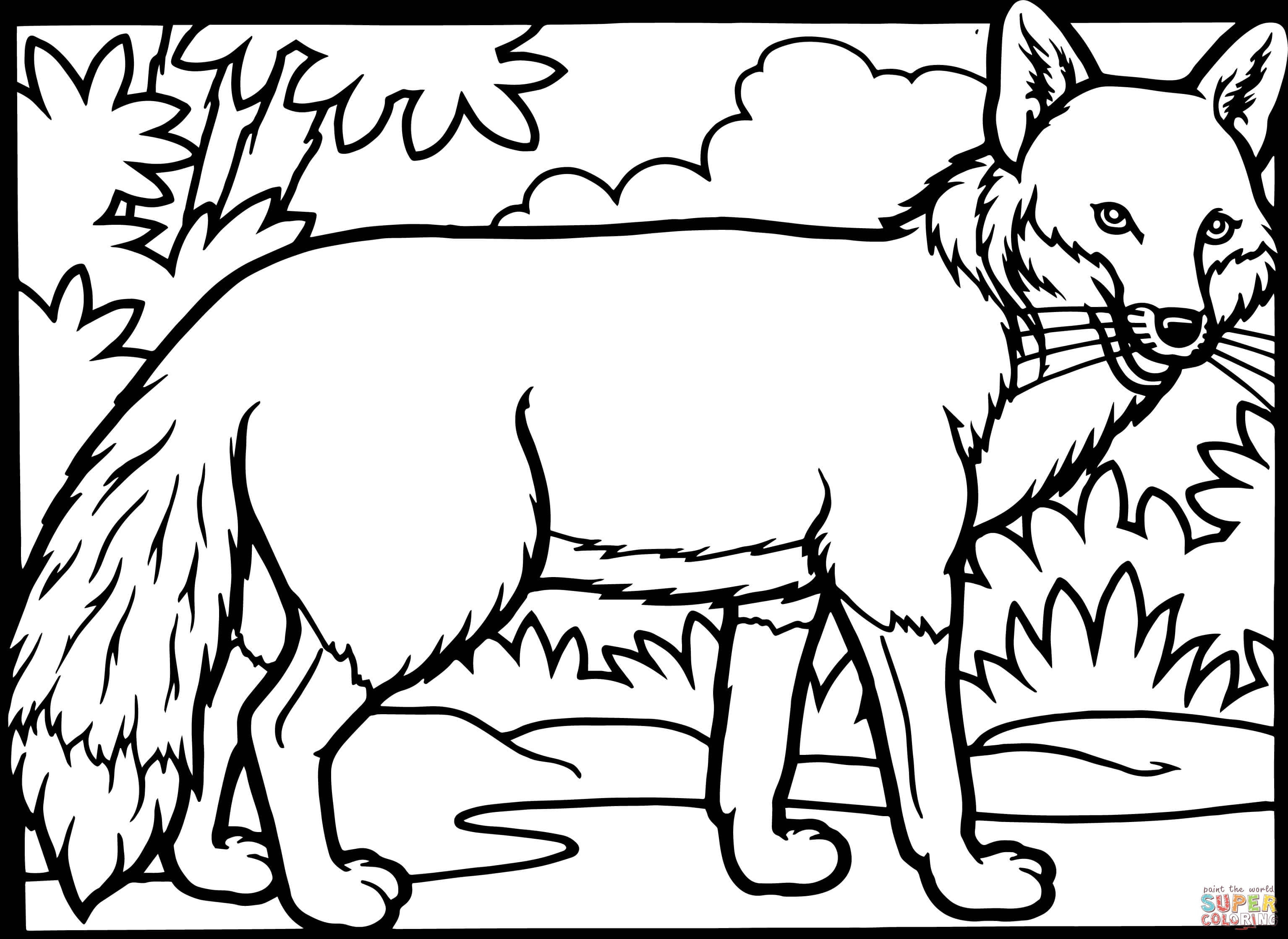 3069x2239 Fennec Fox Coloring Pages