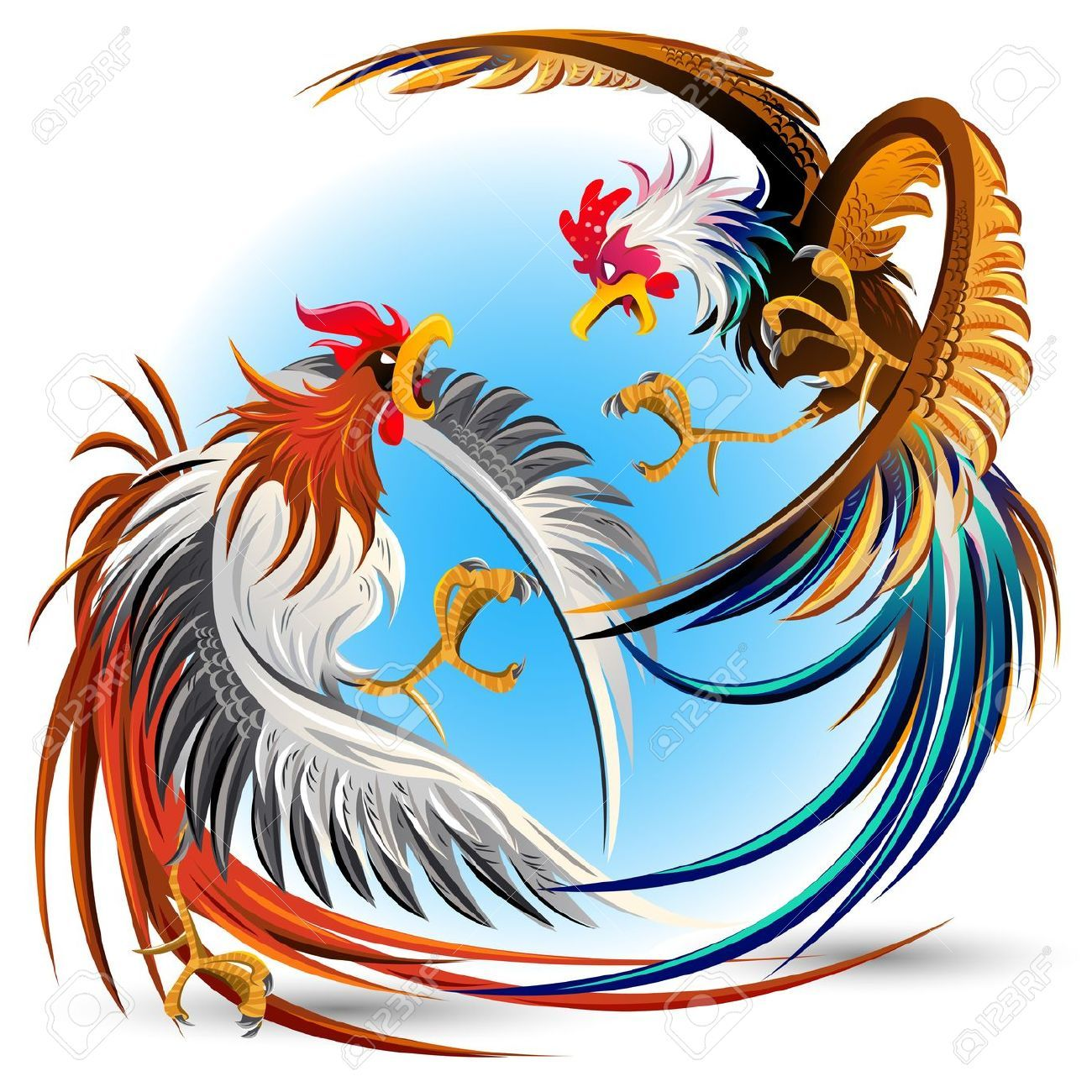 1300x1300 rooster fight stock vector illustration and royalty free rooster