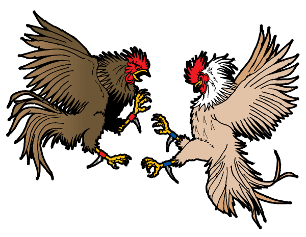 600x465 rooster free vector in gamecocks jsu rooster tattoo