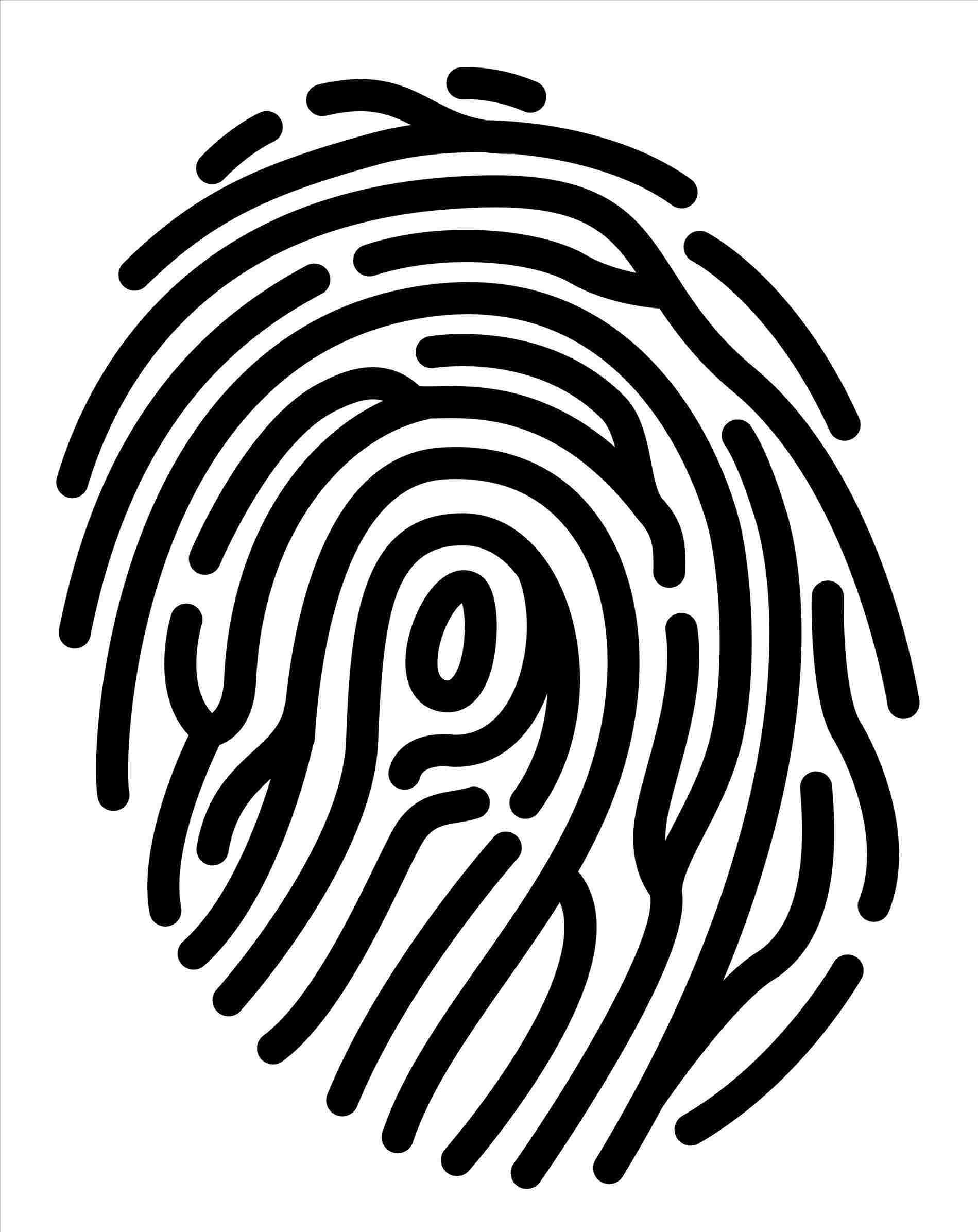 1899x2392 Fingerprint Drawing Easy Drawing Fine Art