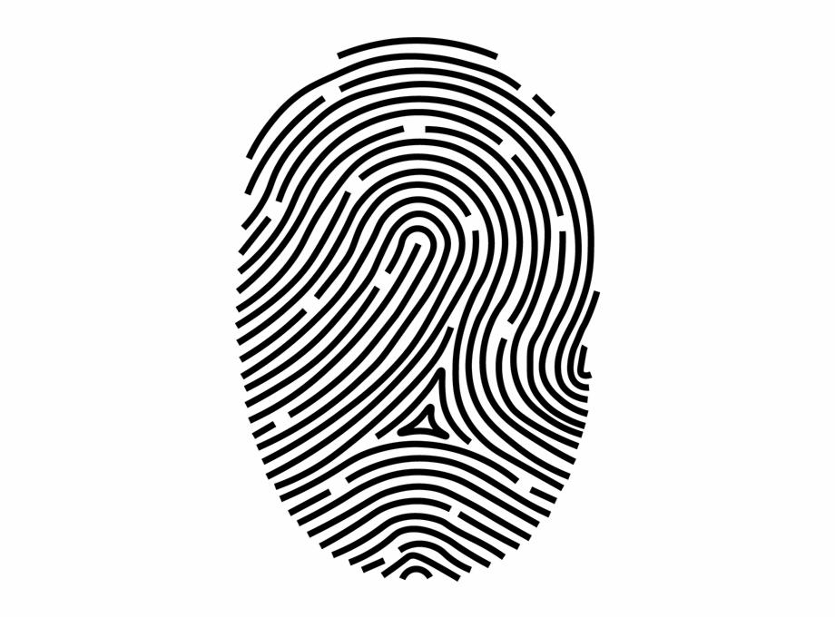 920x681 Fingerprint Png Free Png Images Clipart Download