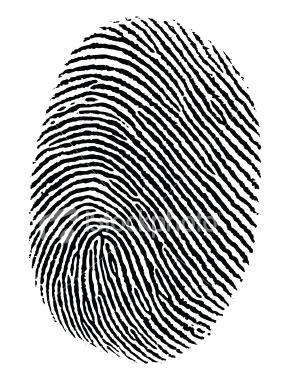 285x380 Fingerprinting