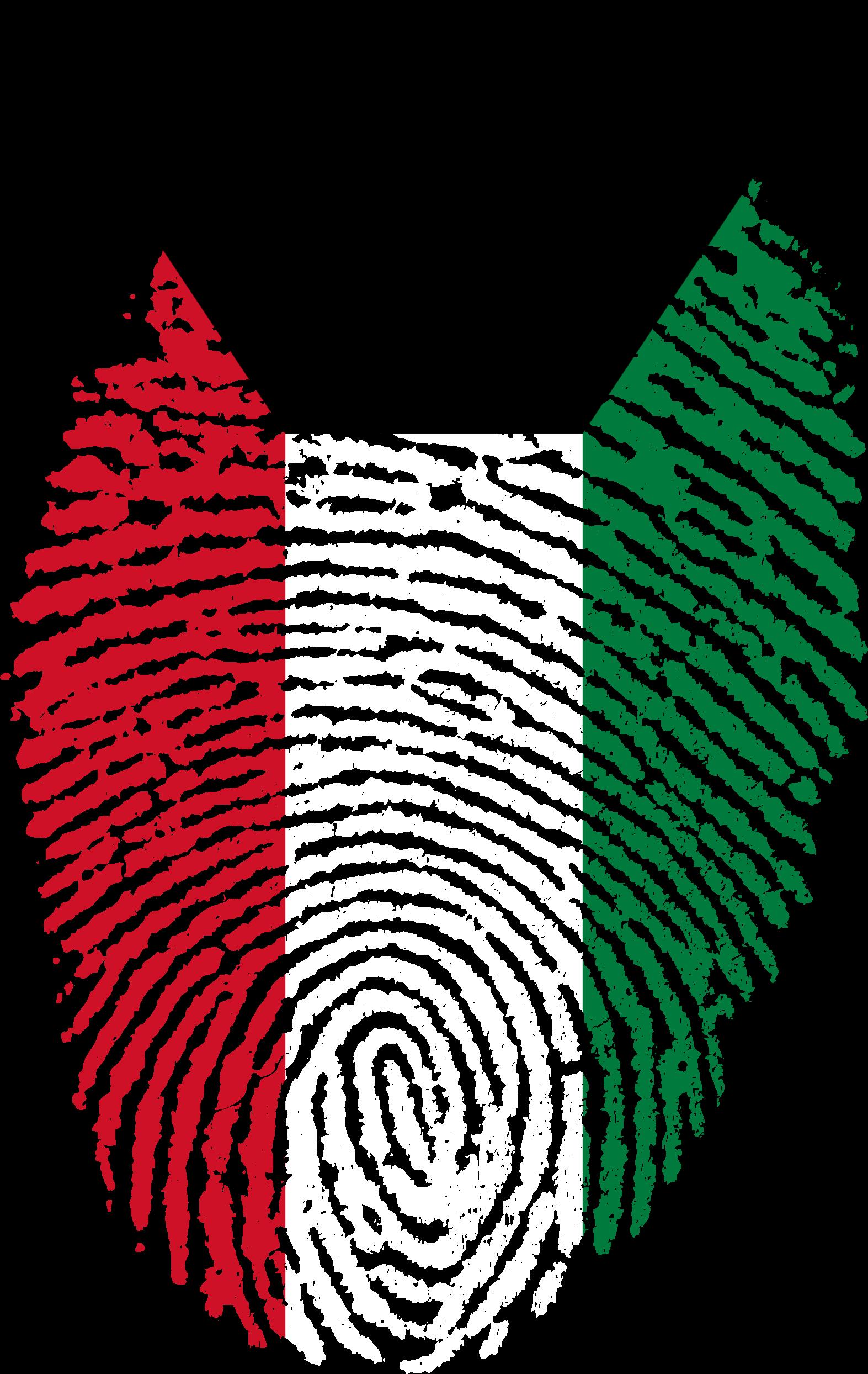 1573x2488 Kuwait Flag On Fingerprint Drawing Free Image