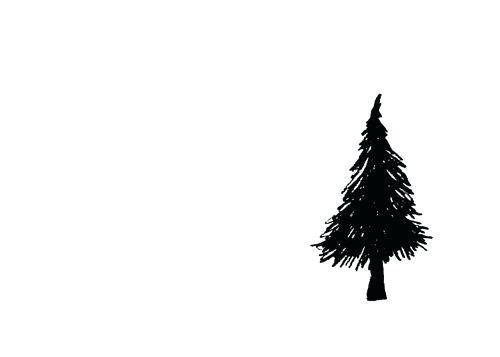 500x357 pine tree drawing pine pine tree drawing simple zupa