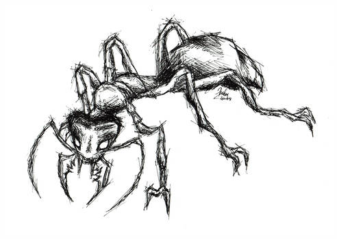 492x350 Fire Ant