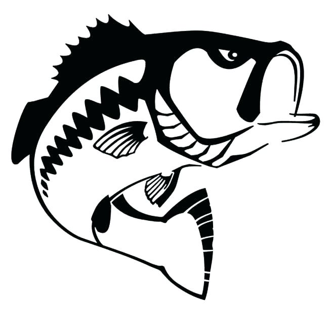 650x622 fish outline fish outline fish simple drawing at fish outline