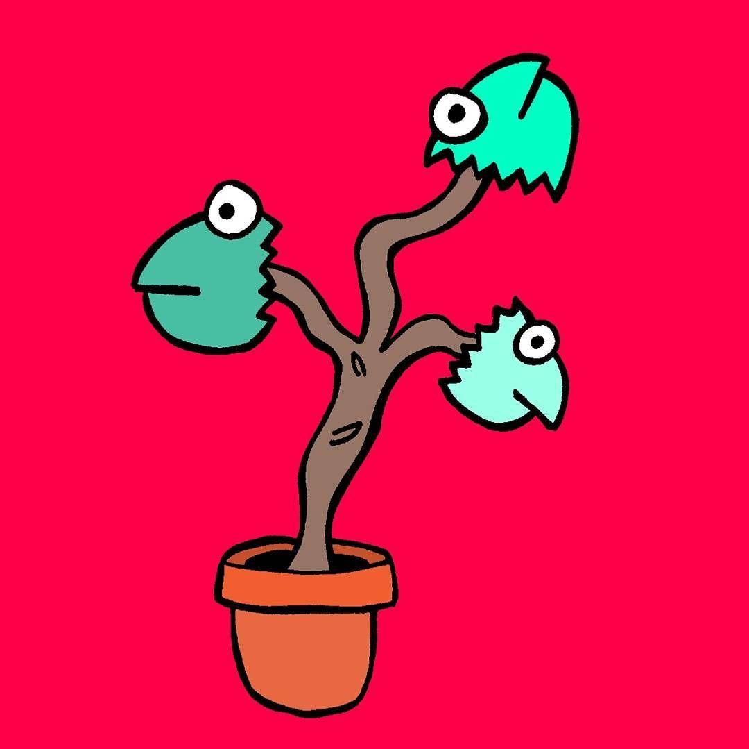1080x1079 Fish Head Plant