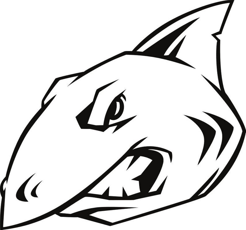 794x740 Huge Collection Of 'shark Head Drawing' Download More Than