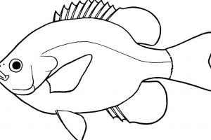 300x200 Fishpond Clipart Clipart Portal
