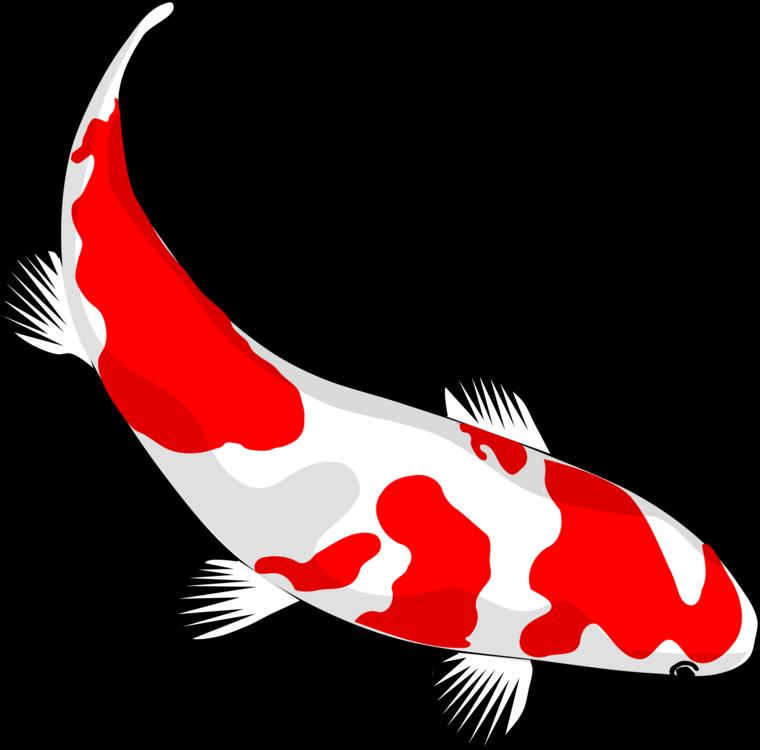 760x750 Koi Drawing Carp Fish Pond Cc0
