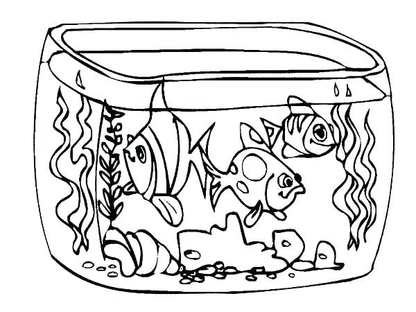 600x450 Free Pond Life Coloring Sheets