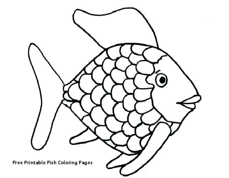 730x569 fish tank coloring pages fish tank coloring