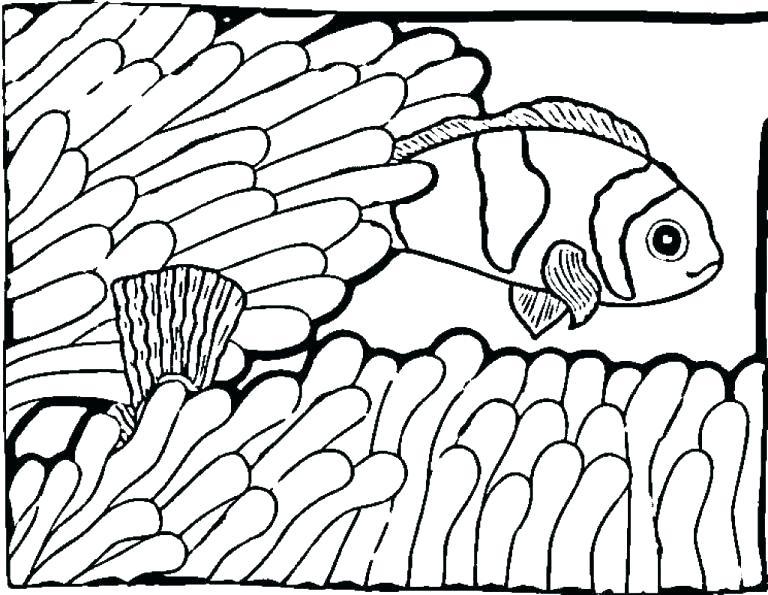 768x595 drawing of a fish tank drawing fish tank