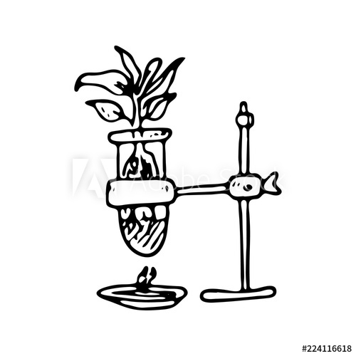 500x500 hand drawn plant in flask doodle icon hand drawn black sketch