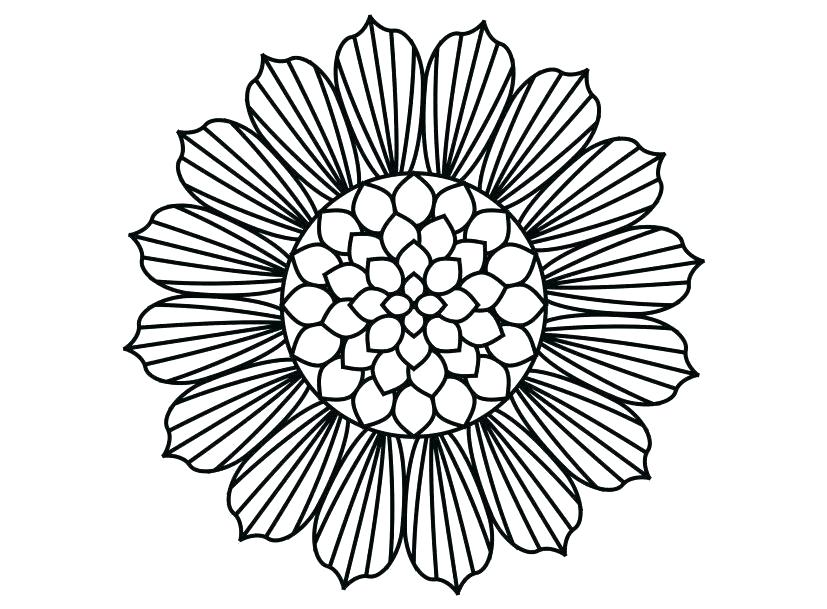827x609 simple sunflower drawing sunflower simple sunflower line drawing