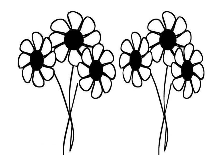 849x600 Daisy Flower Drawing Coloring Page