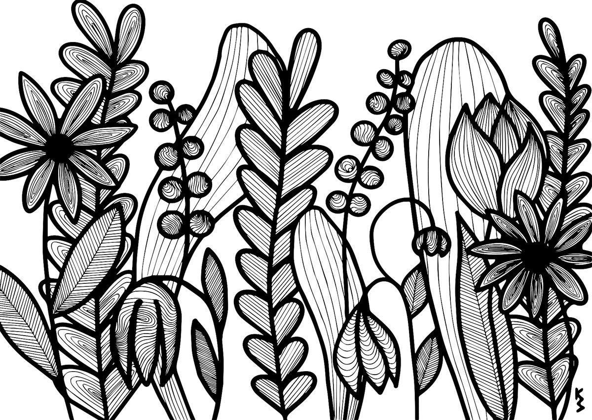 1200x851 Postcard Art Print Drawing Nature Flower Plants Floral Etsy
