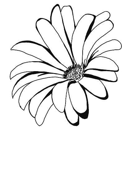 425x550 Spring Time Flower Art Zentangle Art Line Art