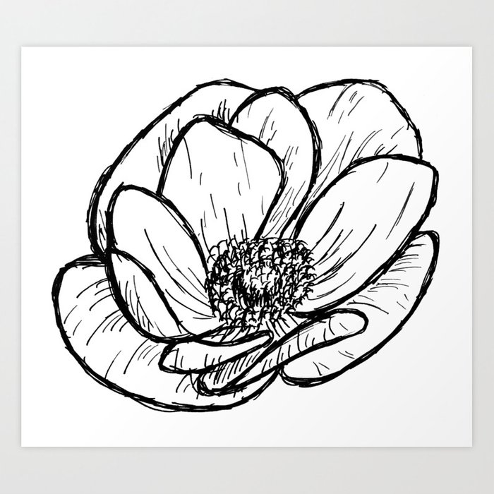 700x700 Anemone Floral Modern Line Drawing Art Print