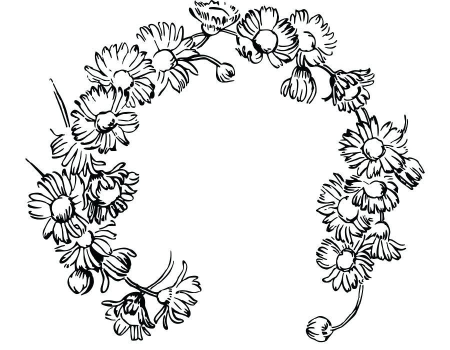 900x700 daisy drawing daisy ii daisy drawing simple