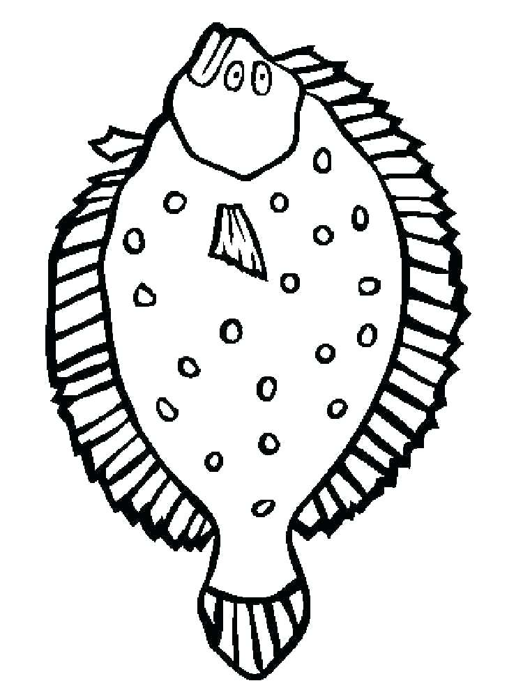 750x1000 Flounder Coloring Pages