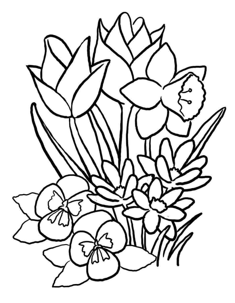 983x1264 Flower Basket Drawing Kids