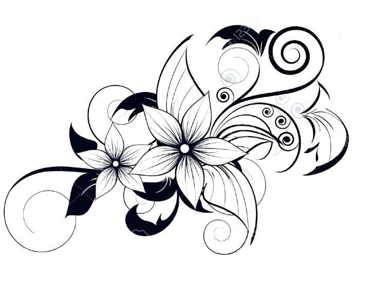 736x551 flower designs to draw easy drawings designs flower border designs