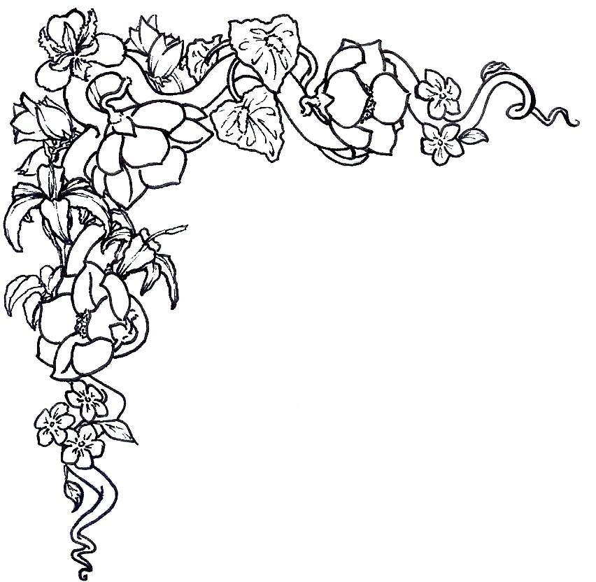 852x832 Flower