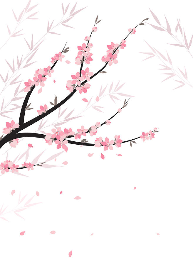 657x900 Branches With Flowers Drawing