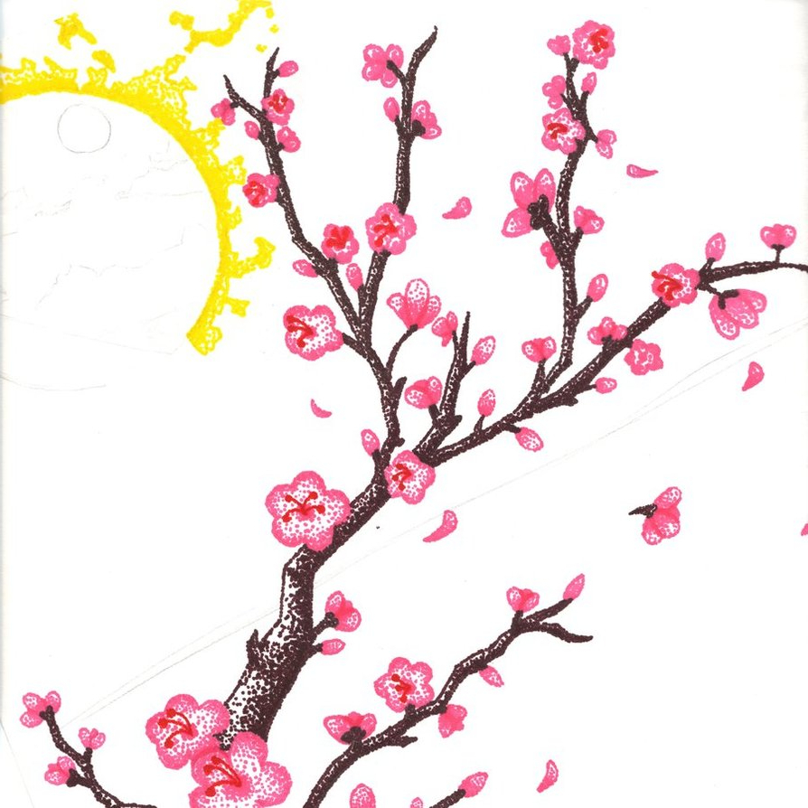 894x894 Cherry Blossom Flower Branch Drawing Cherry Blossom Stippling
