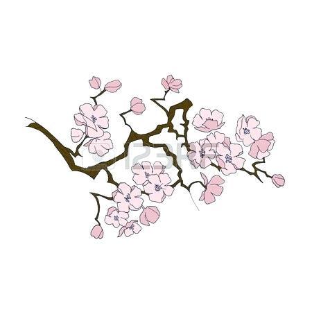 450x450 Draw Cherry Blossom Drawn Cherry Blossom Drawing Pencil