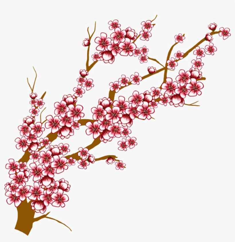 820x845 Japanese Flowering Cherry Transparent Background