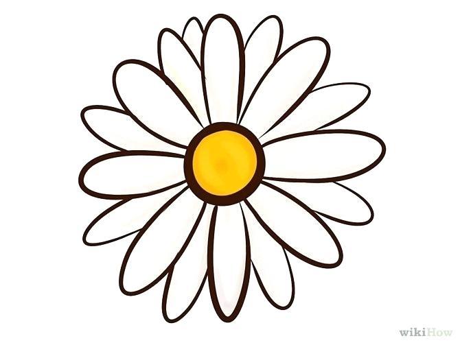 670x503 pretty flowers drawings ways to draw a flower pretty floral