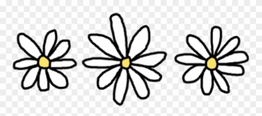 880x389 Flower Drawing Png Tumblr
