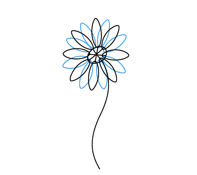678x600 How To Draw A Daisy Easy Drawing Guides