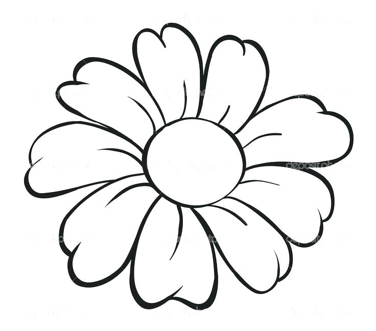 736x648 Flower Drawings With Color