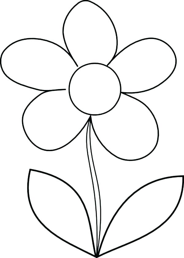 600x840 How To Draw A Flower Step
