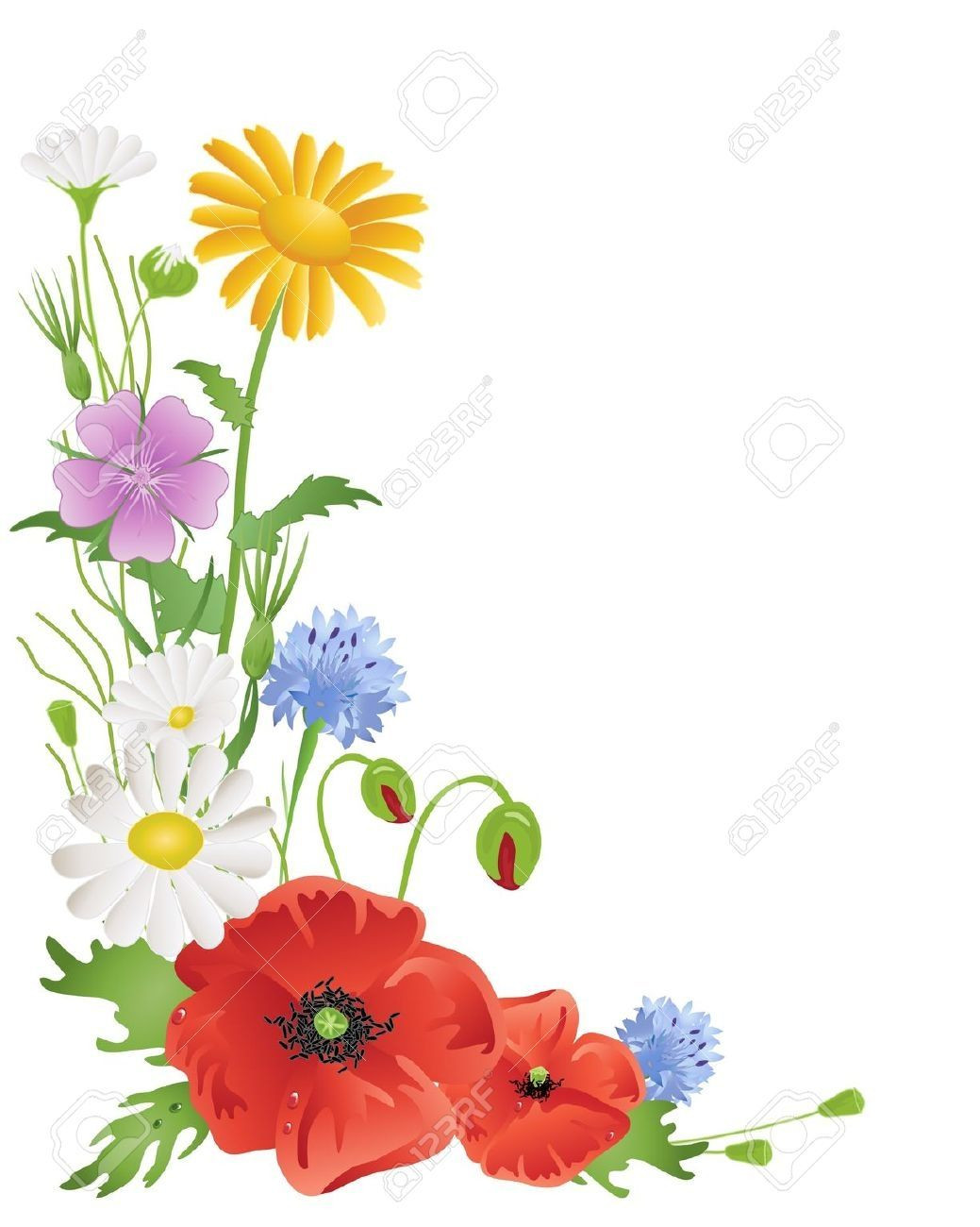 1039x1300 Daisies Clipart Luxury Drawings Of A Bunch Of Wild Flowers