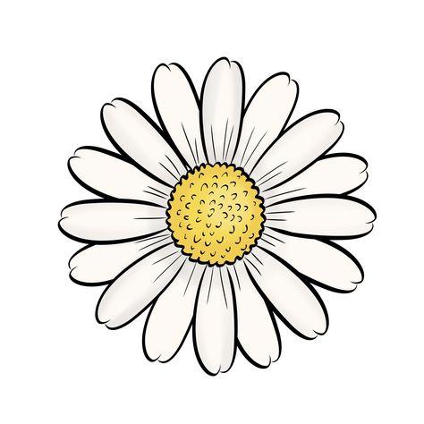 474x474 Daisy, Flowers, Silhouette,graphics,illustration,vector,logo