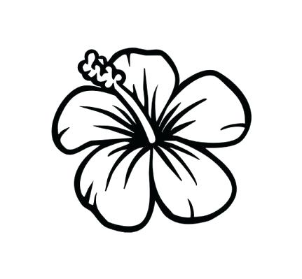 431x399 Pictures Of Flowers To Draw Easy How To Draw Flower Designs Jalu