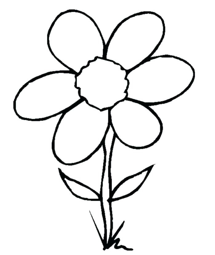 699x828 Simple And Easy Flower Sketches Easy Flower Designs To Draw