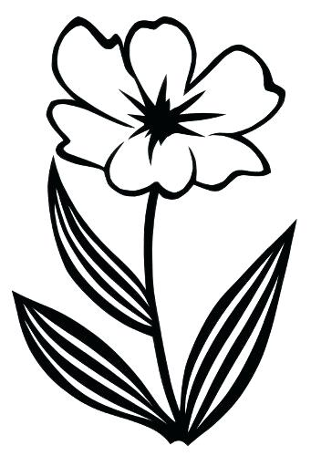 341x500 Simple Flower To Draw